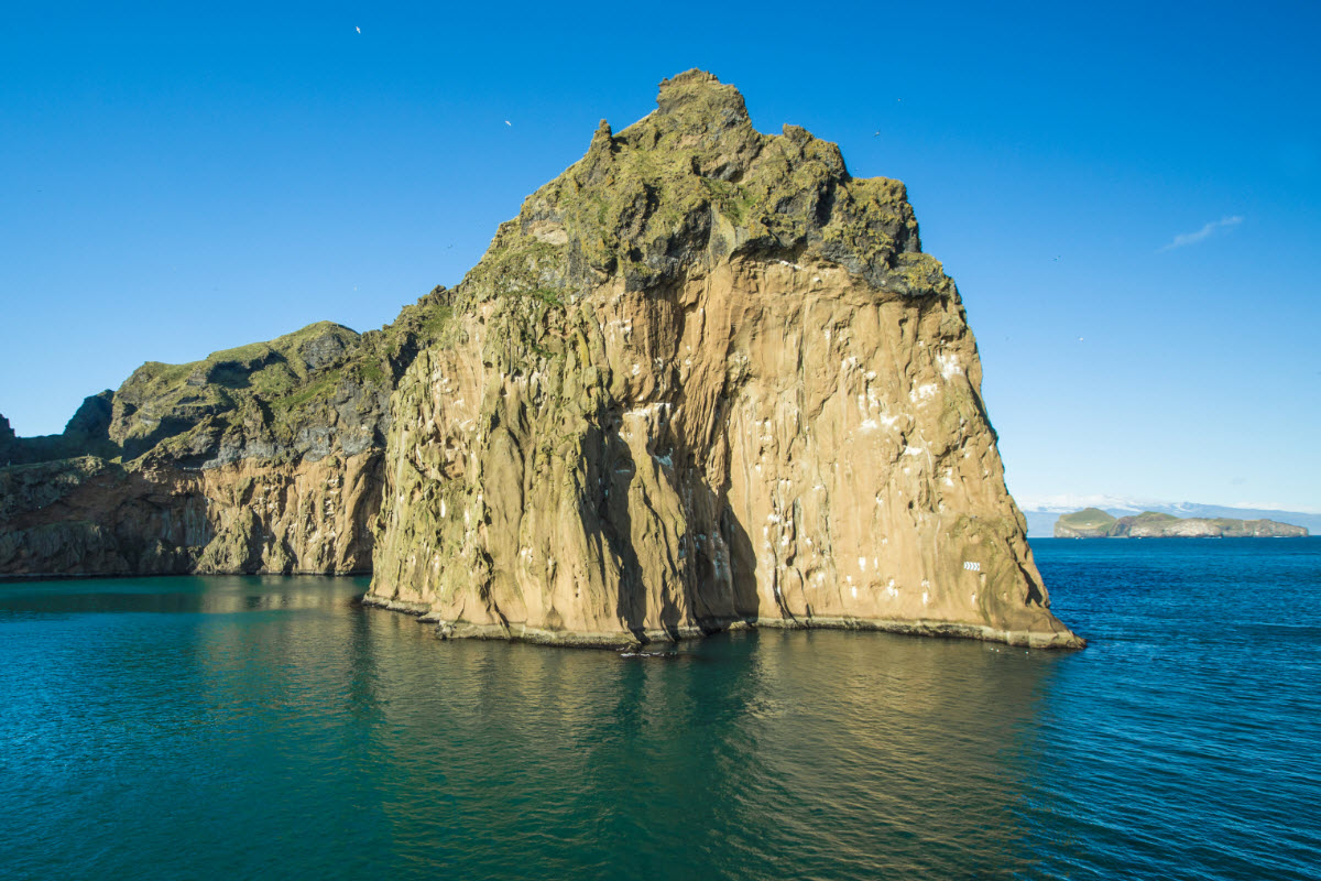 Thousands of seabirds nest in the rocks around Vestmannaeyjar Island