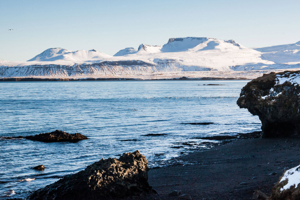 Black sand beach close to Olafsvik during winter in Iceland