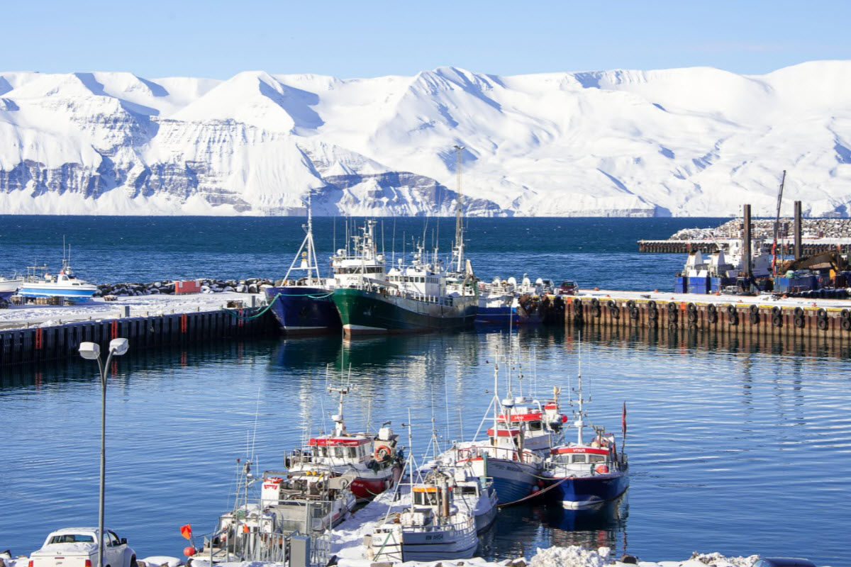 The harbor in Husavik during winter in Iceland
