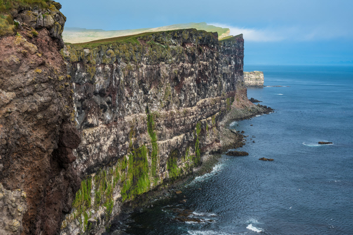 Latrabjarg cliffs are the highest cliffs in Iceland