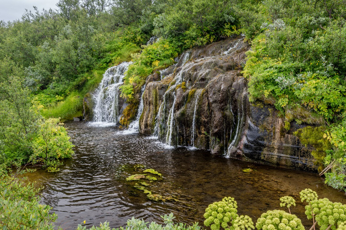 Small waterfalls surrounded by vegetation  in Jokulsargljufur area - thumbnail